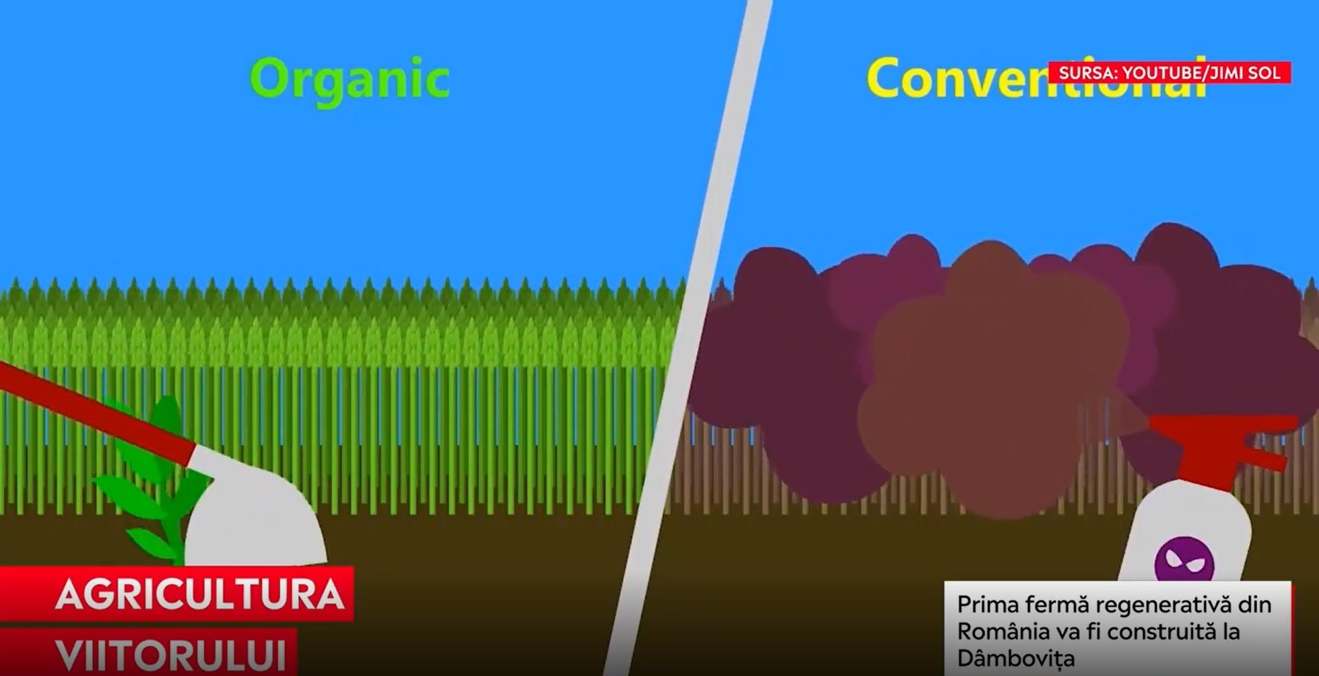 Prima fermă regenerativă din România va fi construită la Dâmbovița. Stagii de practică pentru noua agricultură